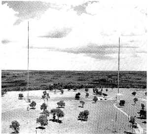 WGTO-AM 540 2 tower array.jpg (68959 bytes)